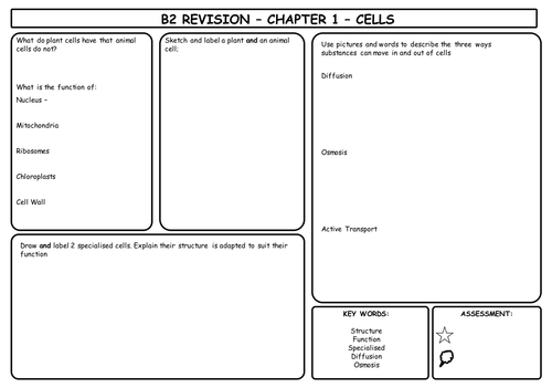 B2 Revision Mats for AQA Additional Science (whole unit)