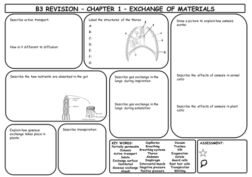 B3 Revision Mats for AQA Triple Science (whole unit)