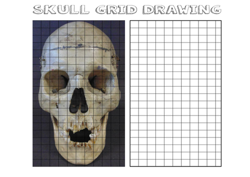 Skull Grid Drawing by TheArtyTeacher Teaching Resources Tes – Grid Drawing Worksheet