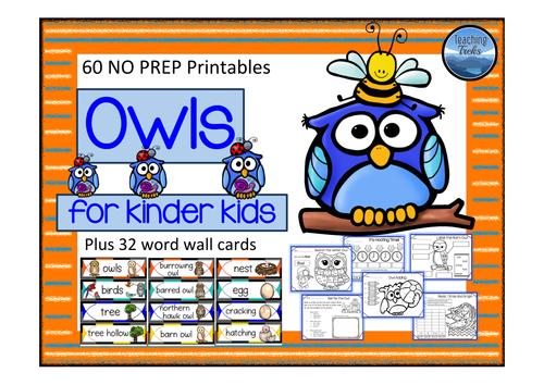Owls for Kinder Kids