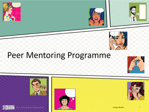 Peer Mentoring Programme