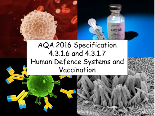 AQA GCSE Biology 2016 Specification 4.3.1.6 & 4.3.1.7 -  Human Defence Systems & Vaccination