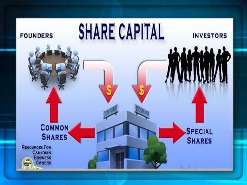 Company Accounts- Shre capital Accounting