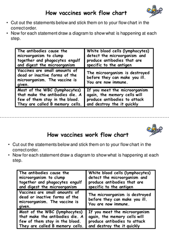 How Do Vaccinations Work By Baysgarthschool Teaching Resources Tes
