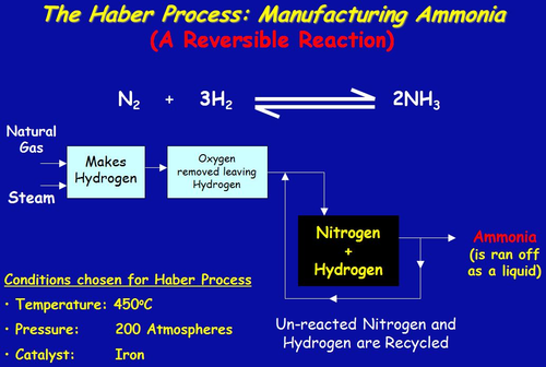 Haber Process: Reversible Reactions and Equilibrium
