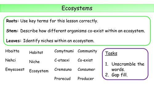 New KS3 Ecosystems and disruption to ecosystems
