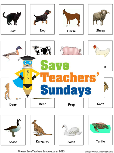 Animals And Their Offspring Ks1 Lesson Plan And Matching Activity By