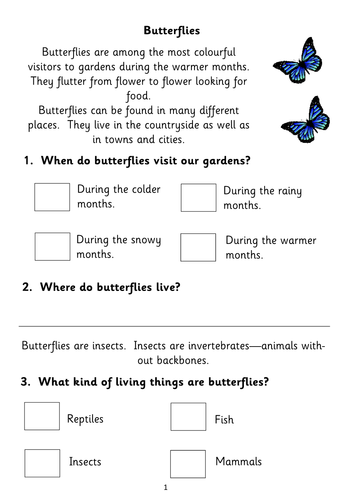 Five Non-fiction Reading Comprehension Booklets for KS1 (based on popular topics)