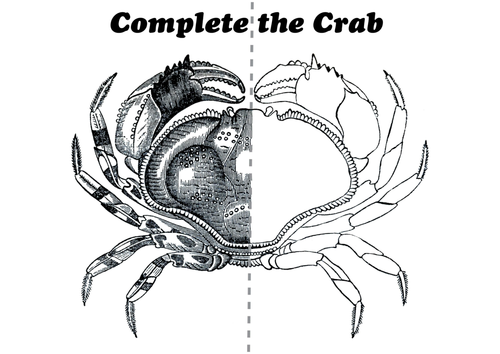 Complete the Crab Mark Making (Animals) by TheArtyTeacher