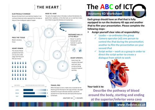 Worksheet to accompany Anatomy 4D app
