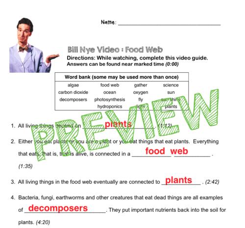Food Web Worksheet Answers Pixelpaperskin – Food Web Worksheet