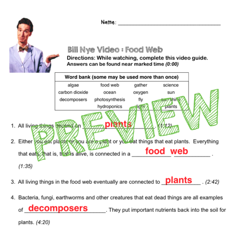 Bill Nye Video Questions - FOOD WEB - w/ time stamp, word ...