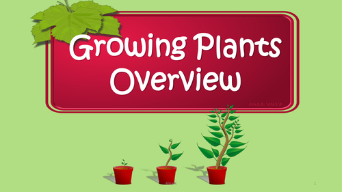 Plants, Seeds and Fruits Science Bundle