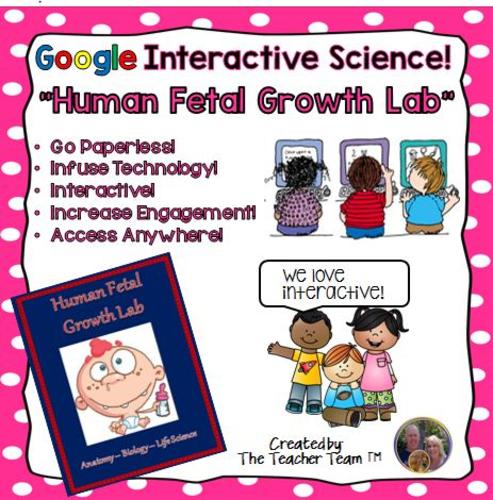 Google Drive Biology- Human Fetal Growth Lab for Google Classroom