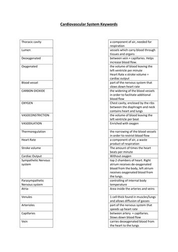 Cardiovascular Keywords Activity