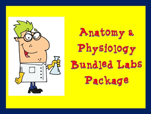 Anatomy Physiology Labs Package Bundle by theteacherteam - Teaching ...