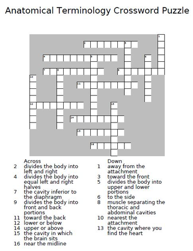 Anatomical Terms Crossword Puzzle by theteacherteam - Teaching ...