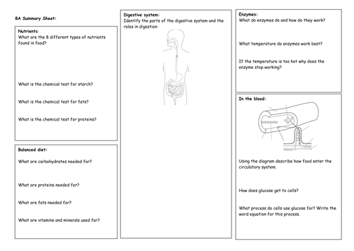 Year 8 Exploring Science Revision Mats for old SoW