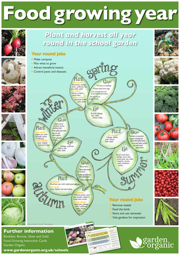 Food growing throughout the year