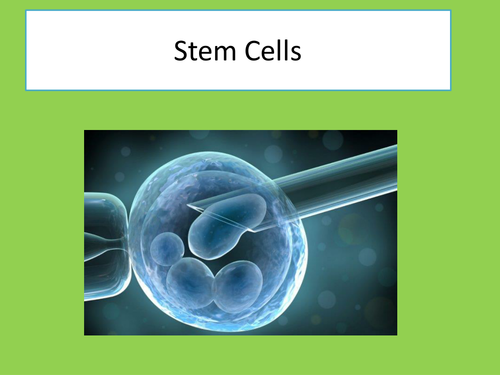 OCR Stem Cells