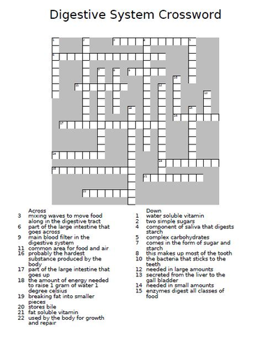 Digestive System Crossword Puzzle By Theteacherteam Teaching