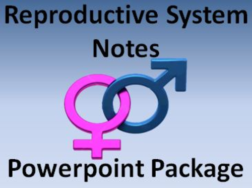 Reproductive System Notes Package Powerpoint Presentations