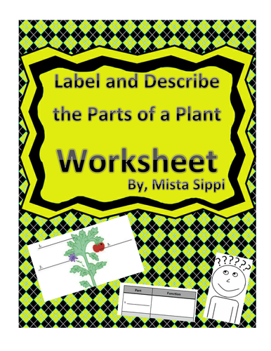 Label and Describe the Parts of a Plant