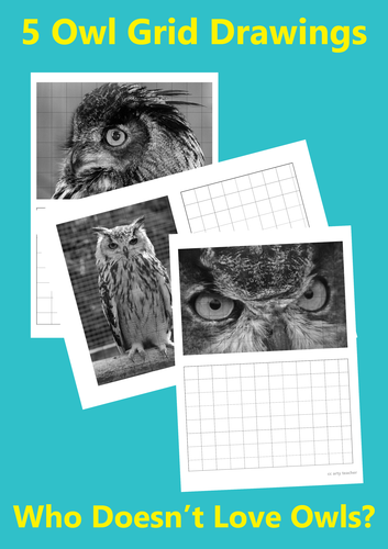 Owl Grid Drawings (animals) (birds)