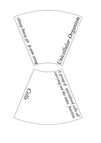 AQA Organisation Key Word Puzzles by ScienceTeacherXX