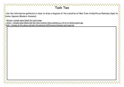 Evolution - five differentiated tasks