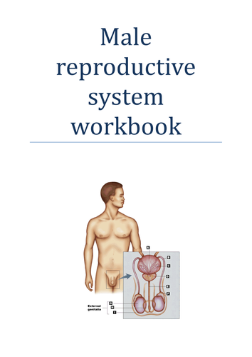 Human reproduction revision workbooks