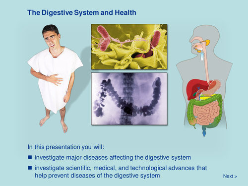 The Digestive System and Health