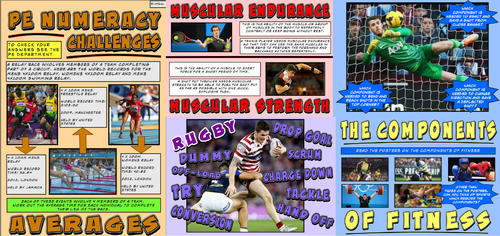 Physical Education Display Board Posters - PE