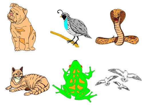 Animals Clip Art Mega Bundle 3 - Farm Animals, Wild Animals, Forest & Aquatic