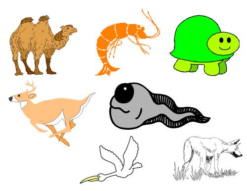 Animals Clip Art Mega Bundle 5 - Farm Animals, Wild Animals, Forest & Aquatic