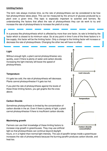 New KS4 AQA Biology Limiting Factors of Photosynthesis Lesson by – Photosynthesis Worksheet Middle School