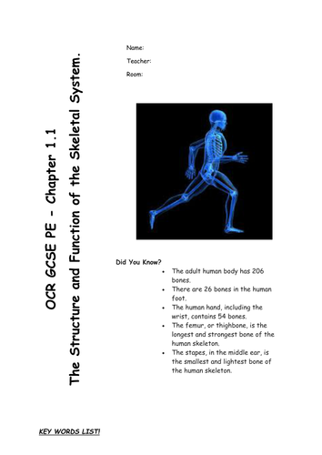 The Skeletal System revision/work booklet - Chapter 1.1 for OCR GCSE PE 2016 specification