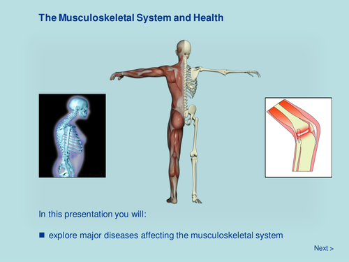 The Musculoskeletal System and Health