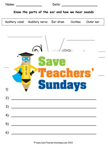 Echoes and sonar ks2 lesson plan and worksheets by echoes and sonar ks2 lesson plan and worksheets by saveteacherssundays teaching resources tes ccuart Choice Image