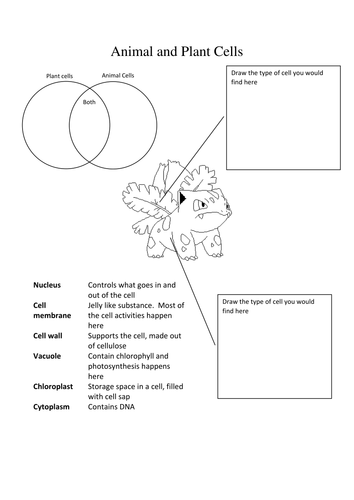 Pokemon Science - Animal and Plant Cells