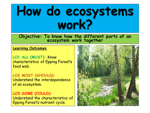Ecosystems - Tropical Rainforest AQA A 2016