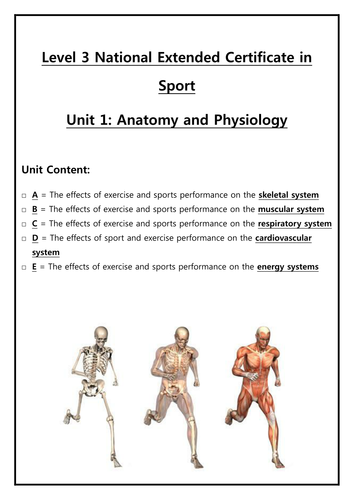 Student workbook for Unit 1: Anatomy and Physiology - BTEC Sport ...