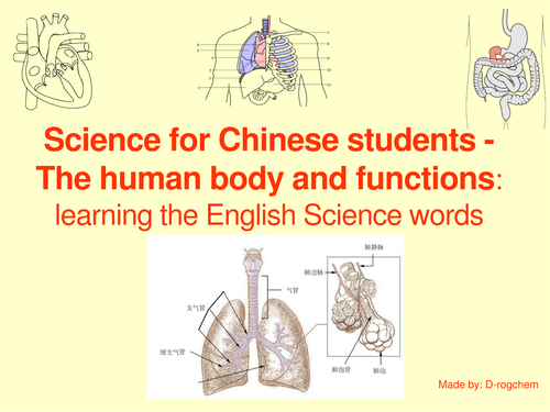 Human anatomy:  learn and use science words: for native Chinese speakers wanting to learn English