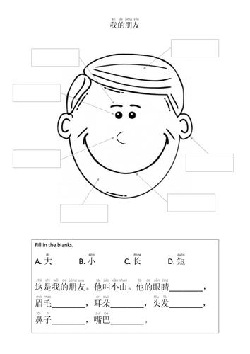 Facial Features  (Mandarin Chinese)