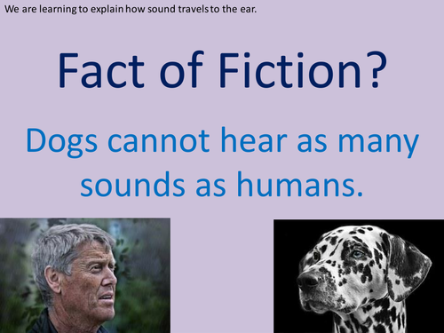 Y4 Science - Sound - Lesson 2, Explaining How Sounds Travel to the Ear (Planning, PP, Resources)