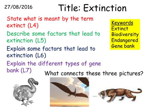 B2 3 7 Extinction