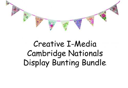 I-Media Cambridge Nationals Level 1/2 Display Bunting Bundle