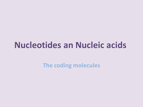 AS level resource about nucleotides