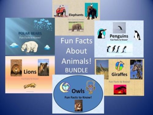 Fun Facts About Owls, Penguins, Polar Bears, Elephants, Lions, Giraffes - BUNDLE
