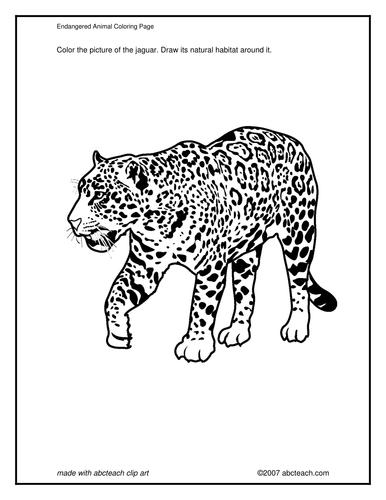 Coloring Page: Jaguar